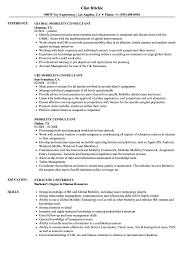 Mobility Consultant Resume Samples | Velvet Jobs