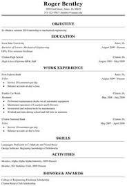 Resume Summary For Freshers 1532063427 V 1 Resume Skills Summary