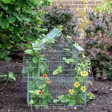 birdcage planter how to recycle a