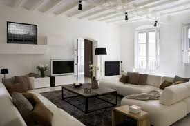 Living Room Modern Apartment Furniture Decorating Ideas Agreeable