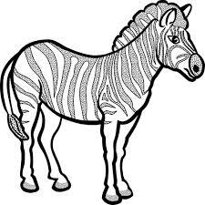 Zebra Nel Disegno Bianco E Nero Di Vettore Immagini Vettoriali