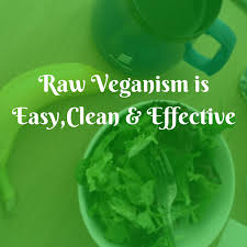 Raw Veganism Is Easy, Clean And Effective + Sample Grocery List ...