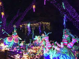 Christmas Light Rental Houston Houston Zoo Staff Makes Sure Zoo Lights Fun Agrees With