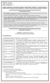Banking Professional Resume Sample Executive Personal Banker