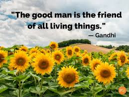 Earth Day Quotes Amazing Earth Day Quotes