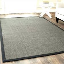 area rugs at costco s decor indoor outdoor rug