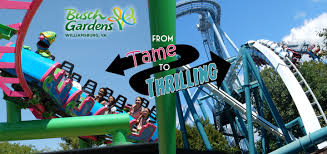 from tame to thrilling the roller coasters of busch gardens williamsburg coaster101