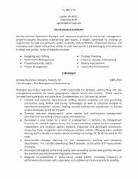 Sample Resume For Call Center Operations Manager Valid Call Center