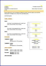 cv templates  functional    resume templatescv templates  functional