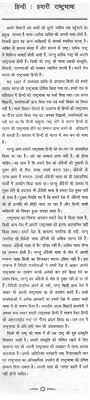 essay on our national language in hindi