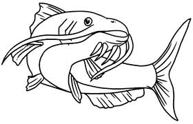 Small Picture Beautiful Catfish Coloring Pages Best Place to Color