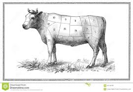 Antique Butcher Chart Old Beef Chart Stock Illustration Illustration Of Heritage