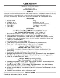 Gallery Of Examples Of Resumes Sample Resume Profile Statement