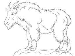 Small Picture Mountain Goat coloring page Free Printable Coloring Pages