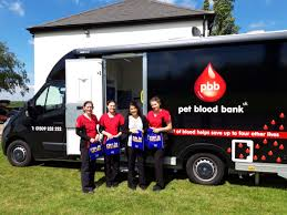 L-R Wendy Barnett (PBB Clinical Director), Liesl Plekker (PBB Vet), Theresa  Hayes (Fish 4 Dogs), and Lauren Robinson (PBB Donor Assistant) - Dogs Today  Magazine