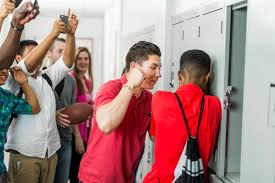 Image result for bullying issues