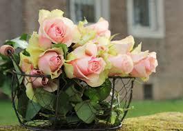 Free picture: garden, summer, flower, white rose, nature, arrangement,  pink, petal
