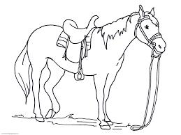 Little Horse Coloring Pages L L L L L L Duilawyerlosangeles
