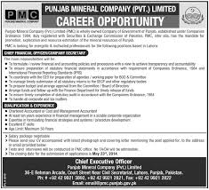 chief financial officer job archives jhang jobs chief financial officer job lahore punjab mineral company limited pmcl job