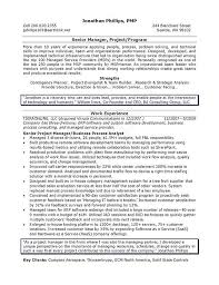 Senior Resume Template Senior It Manager Resume Example