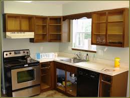Refinish Cabinet Kit Refinish Kitchen Cabinets Before And After 10 Diy Kitchen Cabinet