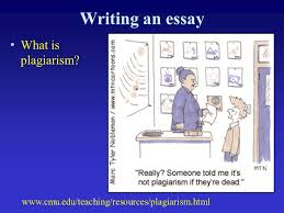 writing about internet essay toefl practice