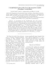 dissertation proposal form kennco taxi