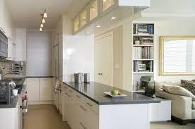 Narrow Kitchen Design Small Narrow Kitchen Designs Kitchen Decor Design Ideas