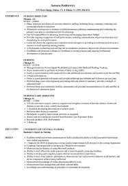 Practice Director Job Description Nursing Resume Samples Velvet Jobs 19