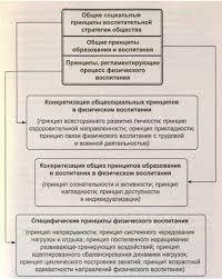 Физкультура и спорт Принципы в системе физического воспитания  Система принципов