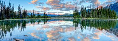 Image result for spring break reflection