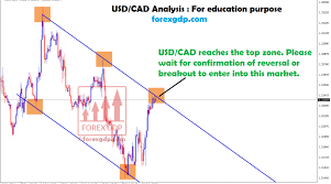 Usd Cad Live Chart Archives Forex Gdp