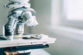 Наука В институте более 35 лет работали диссертационные советы по защите докторских и кандидатских диссертаций В настоящее время сотрудники института и