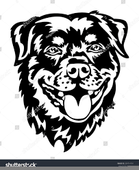 lion face black and white clipart. Brilliant Clipart Download This Image As And Lion Face Black White Clipart N