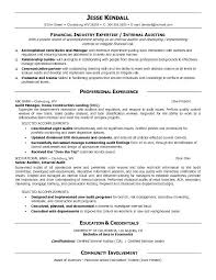 Internal Auditor Resume Objective Internal Resume Sample Internal Auditor Resume Samples 50