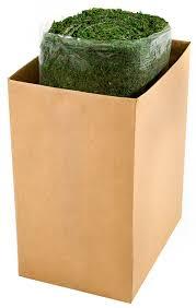 Moss Mats Amazoncom Super Moss 22431 1 1 2 Foot By 24 Foot Instant Green