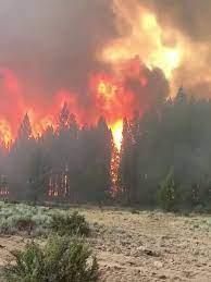 Hundreds of firefighters battle massive ...