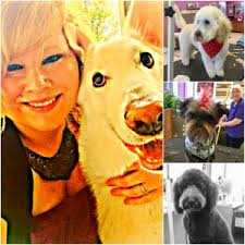 Amy Walton, Author at Pet Care Center - Page 2 of 3