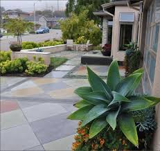 front yard landscaping without flowers