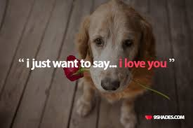 Just Wanted To Say I Love You Quotes New I Just Want To Say I Love You Download This Quote For Your