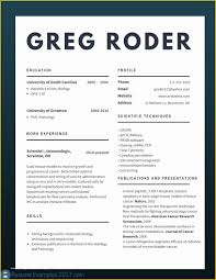 Top Resume Templates 2017 Free Of Updated Resumes Examples