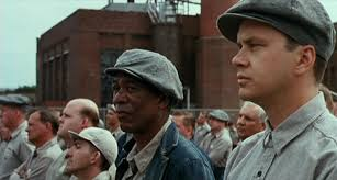 shawshank redemption essay topics essays the shawshank redemption prison subcultures creating a thesis