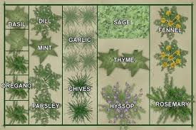 Small Picture Garden Design Garden Design with Vegetable Garden Layout Template
