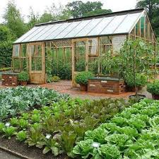 Small Picture 720 best Vegetable Gardening images on Pinterest Organic