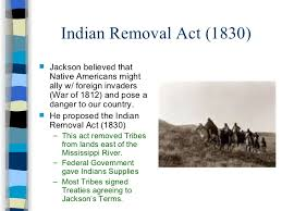 n removal act essay  n removal act essay andrew jackson n removal quotes