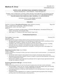 Business Resume Format Gorgeous Sales And Marketing Resumes Resume Format Samples For College