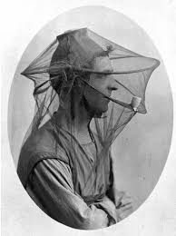 Image result for bee keeping hat