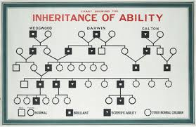 Chart Showing Inheritance Of Ability Eugenics Education