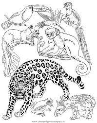 Disegno Tigre16 Animali Da Colorare