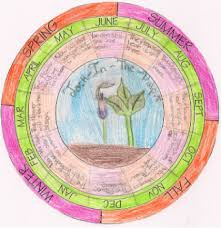 Phenology Chart Phenology Wheels Earth Observation Where You Live